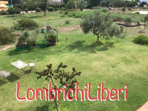 Via al progetto Lombrichi Liberi a Quartu!